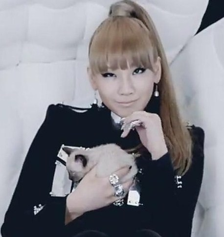 2NE1-I-AM-THE-BEST-cl-and-minzy-23307470-458-484